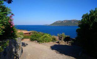 La Corse aux mille et un terroirs