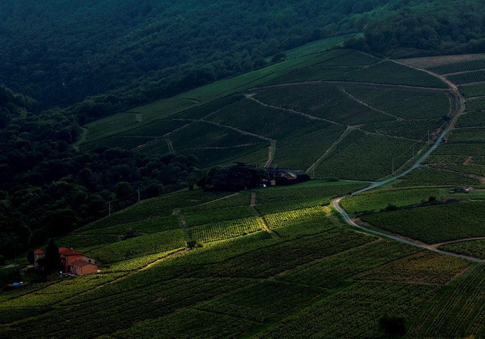 Special Vins Le Grand Tableau Des Millesimes Journal Du Vin