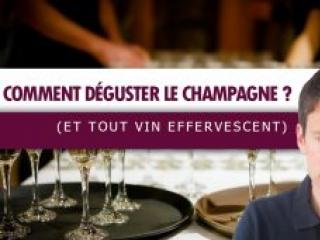 Comment déguster le CHAMPAGNE🥂 (ou tout vin effervescent) (Leçon n°132)