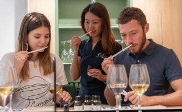 De nouveaux e-ateliers d'initiation aux vins de Bordeaux